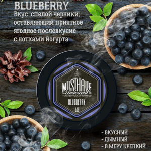 MUST HAVE BLUEBERRY (МАСТХЕВ ЧЕРНИКА) 25 г