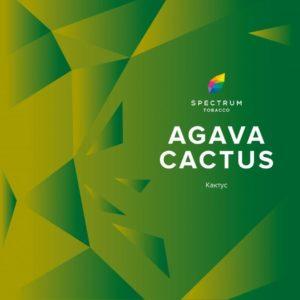 SPECTRUM — AGAVA CACTUS (СПЕКТРУМ АГАВА КАКТУС)