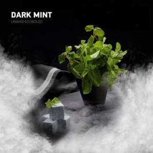 DARK SIDE Dark Mint (Тёмная мята) 100гр1