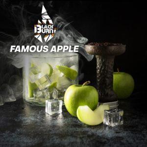 Black Burn Famous Apple ( Зеленое яблоко со льдом) 100г