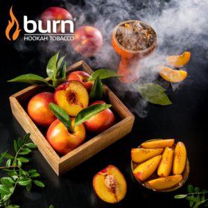 Burn Nectarin ( Нектарин) 1г