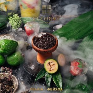 Element Feijoa Земля (Фейхоа) 40г