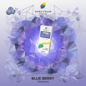 Spectrum Blue Berry (Черника) 100г