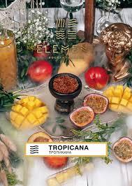 Element Tropicana Земля (Тропикана) 40г